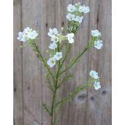 Flor de cera artificial AISHA, crema-blanco, 65cm